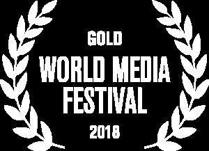Silver World Media Festival 2019 award